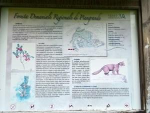 Cartello Foresta Demaniale Regionale dei Pian Grande