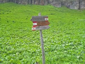 Bivio per sentiero CAI-484 a Forcella Pezzei, Casera Busnich e CAI-482 per Podenzoi
