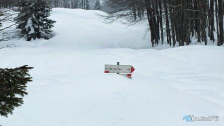 Bivio, cartello che a malapena spunta dalla neve.