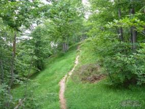 Sentiero verso il Monte Ciastelat