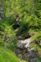 rio molassa