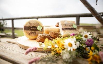 Estate: la stagione dei formaggi di alpeggio