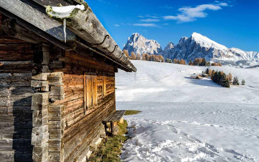 Escursione natalizia tra i 6 migliori formaggi di alpeggio