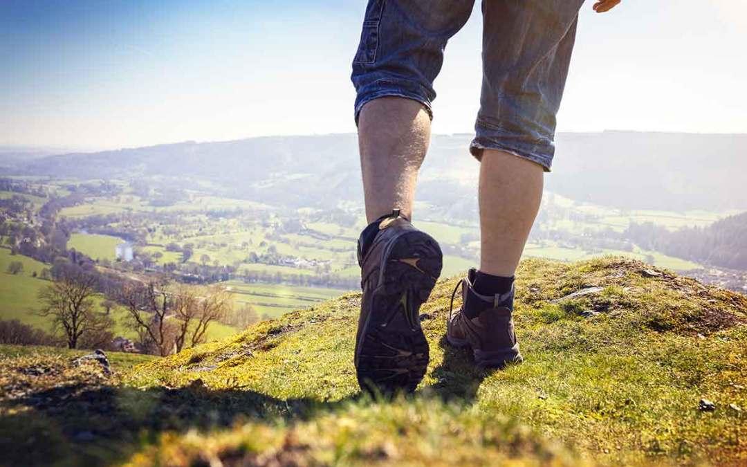 Escursioni nel gusto: cosa mangiare quando si cammina in montagna