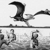 10 especies desparecidas en 10 años