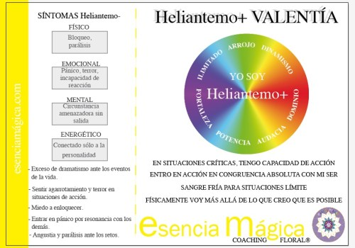 tarjeta coaching floral heliantemo-valentía