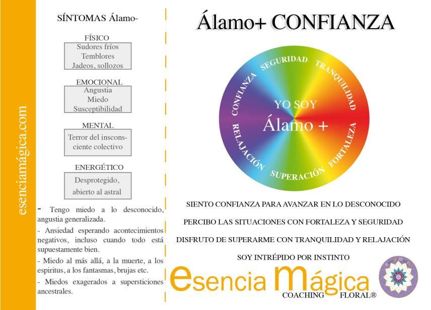 alamo-CONFIANZA