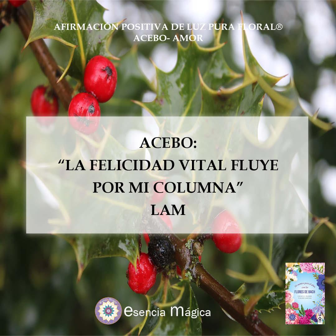 Afirmación positiva de Luz Pura Floral. Acabo-Amor