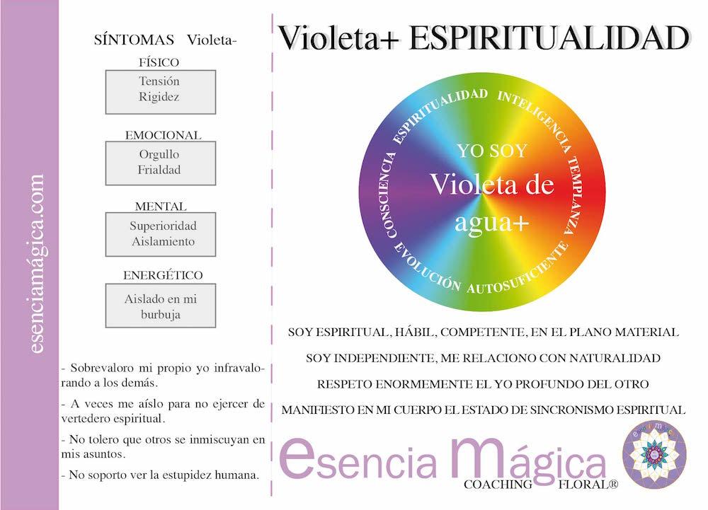 TARJETA COACHING FLORAL VIOLETA DE AGUA