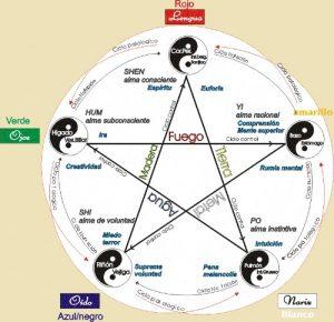 yin-yang-5-herboristeria-xativa