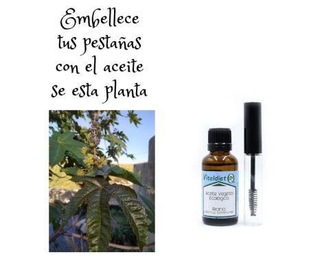 Castor oil for your eyelashes