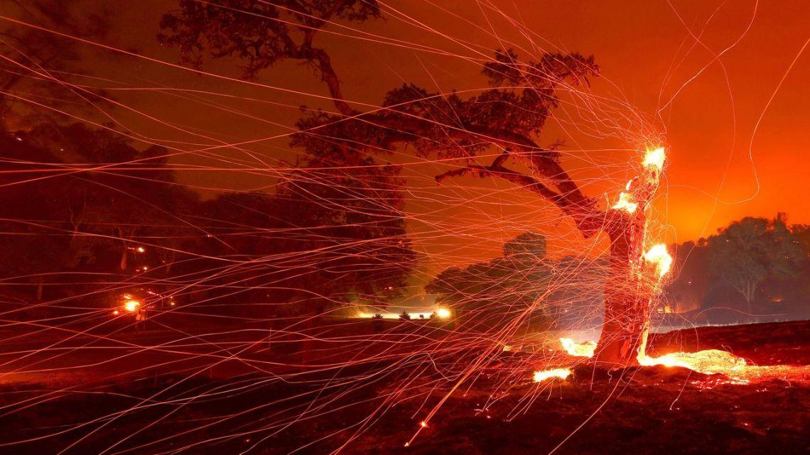 13 maneiras pelas quais a Terra mostrou sua ira em 2020.