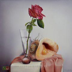 La caracola y la rosa