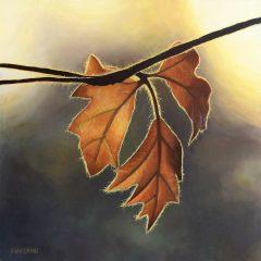 Últimos días de otoño