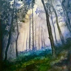 Bosque de helechos