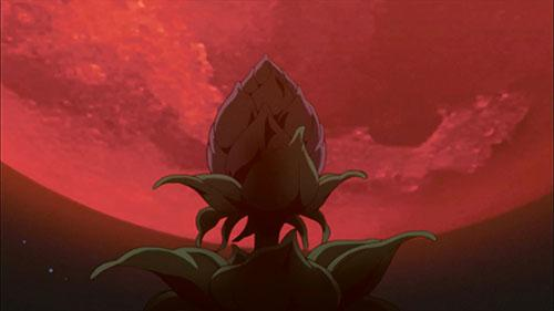 Naruto Shippuden screenshot of the top of the Divine Tree in Episode 381