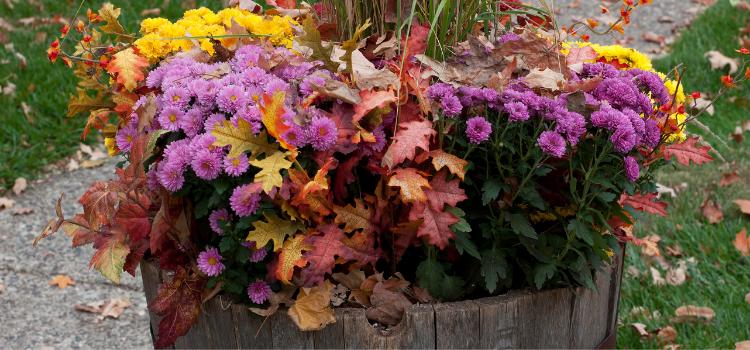Fall Planters Ideas Inspiration