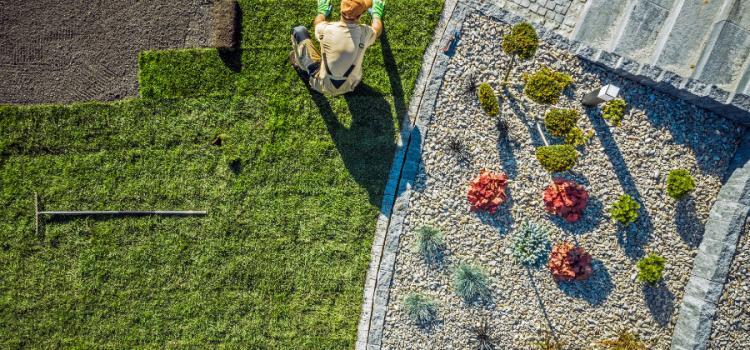 Hiring a Landscape Contractor