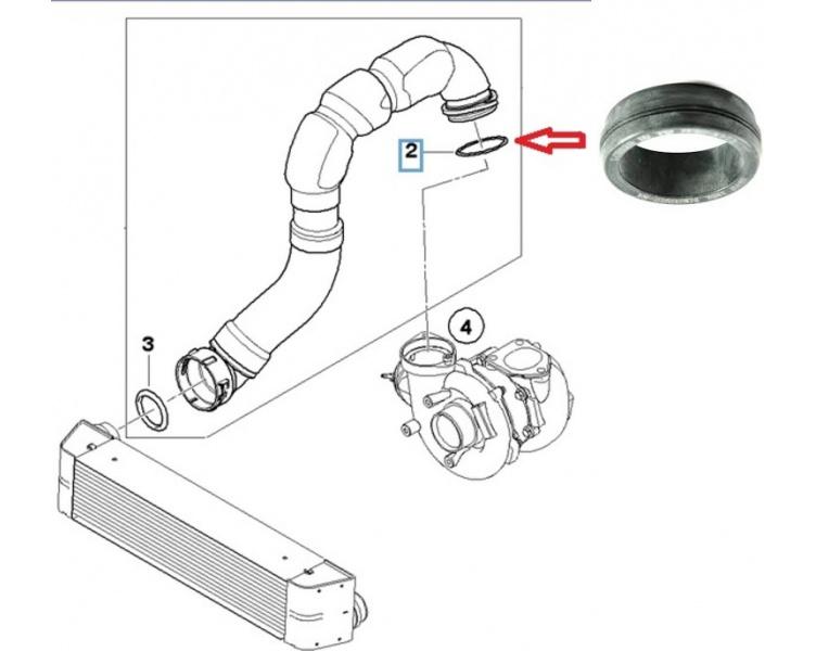Žiedelis turbinos, interkūlerio žarnos 11617801222 (BMW