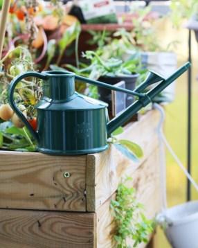 arrosoir plantes d'intérieur en plastique recyclable - vert foncé, vert sapin posé sur un bac potager en bois   l'échoppe végétale