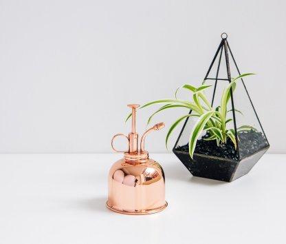 Brumisateur en cuivre vintage pour plantes d'intérieur