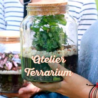 atelier terrarium à Nanterre, à l'arrière du restaurant Foodentropie