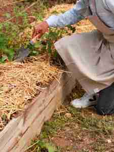Tablier en lin lavé jardinier urbain beige taupe et basket VEJA blanche- Échoppe Végétale