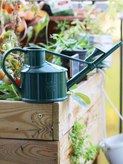 arroser cet été avec un petit arrosoir anglais vert foncé en plastique recyclé