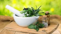 Herbalism Introduction Medicine Making