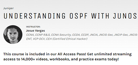 JUNOS INE Understanding OSPF