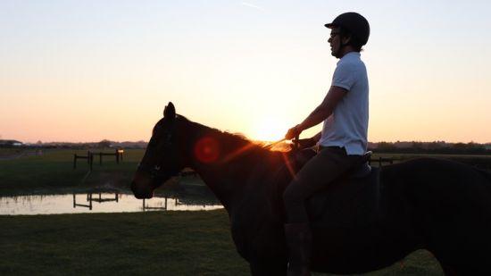 Speak the Horse Language Master Your Horsemanship Energy