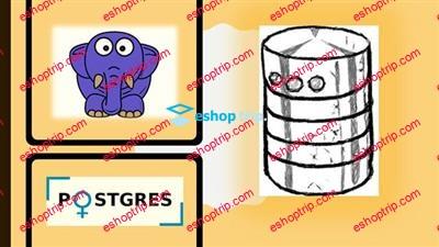 SQL Bootcamp SQL and PostgreSQL Database for Beginners
