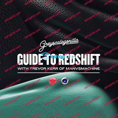 Greyscalegorilla Guide to Redshift 2018