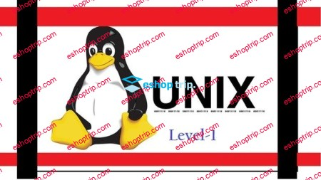 New to Unix Linux Command Learn Step by Step For Beginner