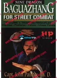 Baguazhang For Street Combat