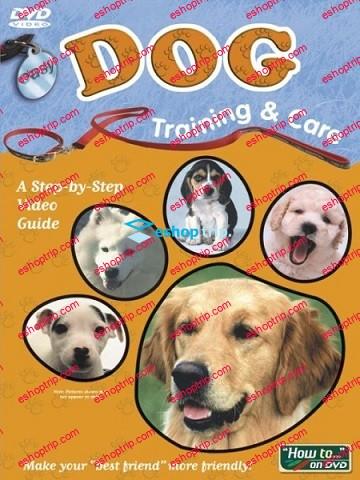 Easy Dog Training Care 1