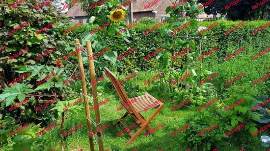 Permaculture What you need to know
