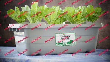 Aquaponics Food Rising Mini Farm Grow Box Preppers Survival
