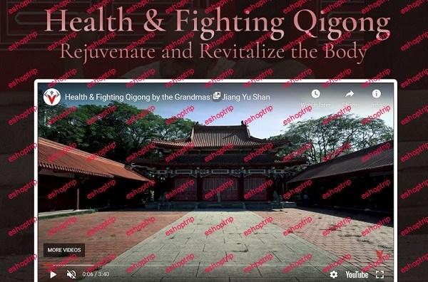 Warrior Neigong Health Fighting Qigong