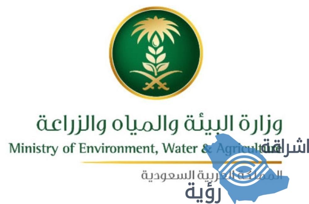 """""""البيئة"""": 45.6 ألف طن إنتاج الزراعة العضوية للمملكة في 2018"""