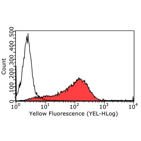 SSEA-3 anti-Human/Mouse Antibody