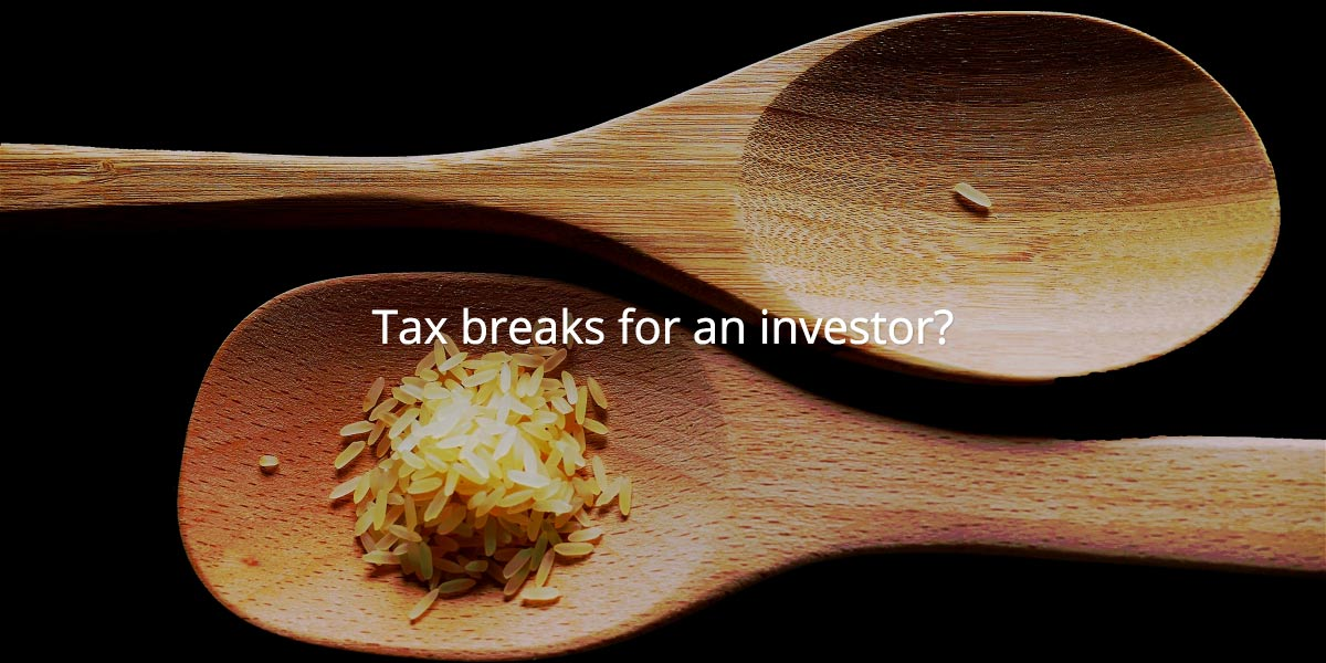 What do the tax breaks look like for an investor?