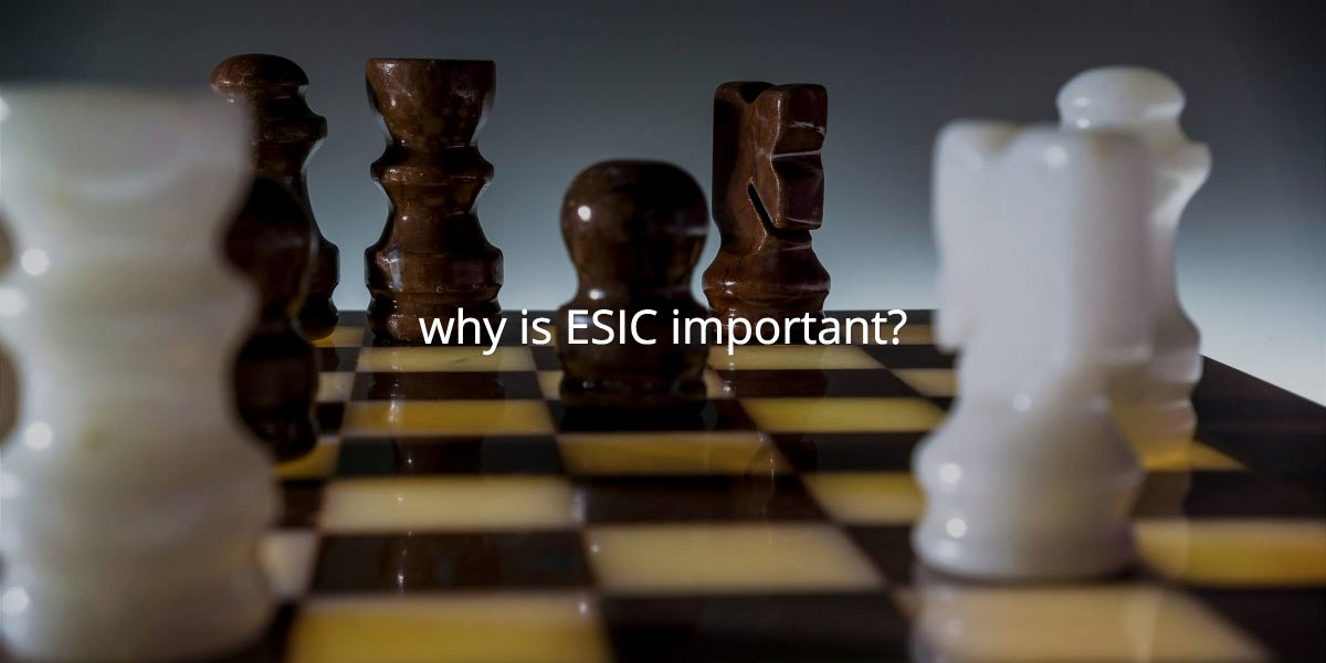I am a start up, why is ESIC® important to me?