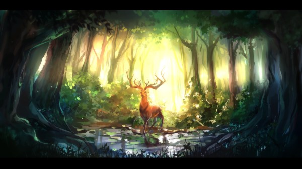Fantasy Deer Sunlight Art Wallpaper 2560x1440 #10389