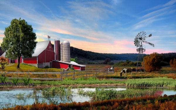 Free Desktop Wallpaper Summer Farm