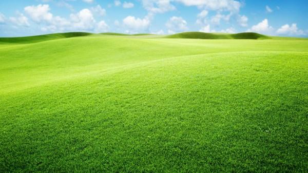 green landscape wallpaper 1920x1080