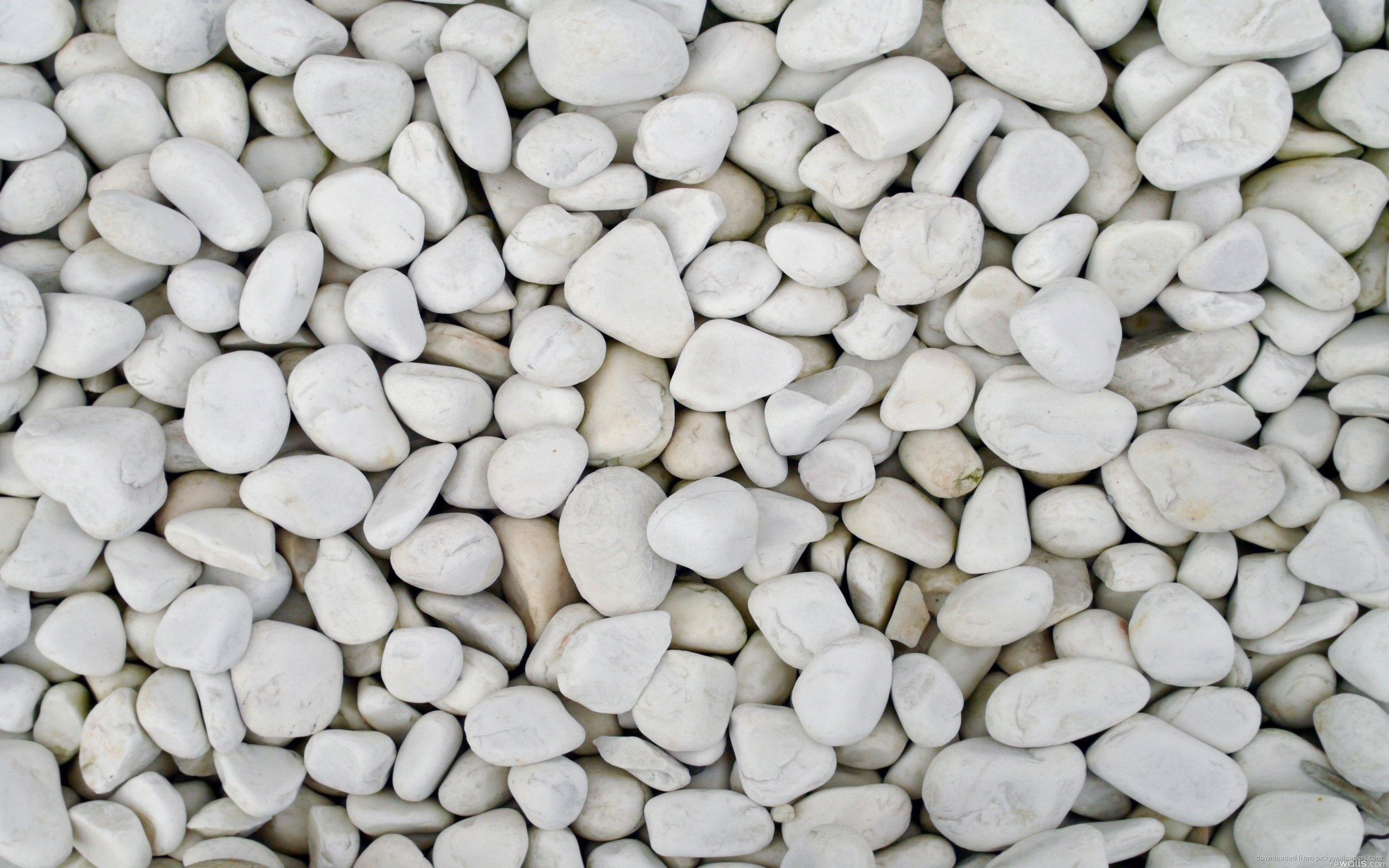 Anime Beach Wallpaper Pebbles Wallpaper 2560x1600 8424