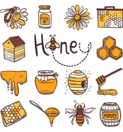 Honeybees are important   ESL Brains [ 780 x 1380 Pixel ]