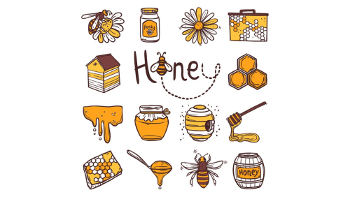 small resolution of Honeybees are important   ESL Brains