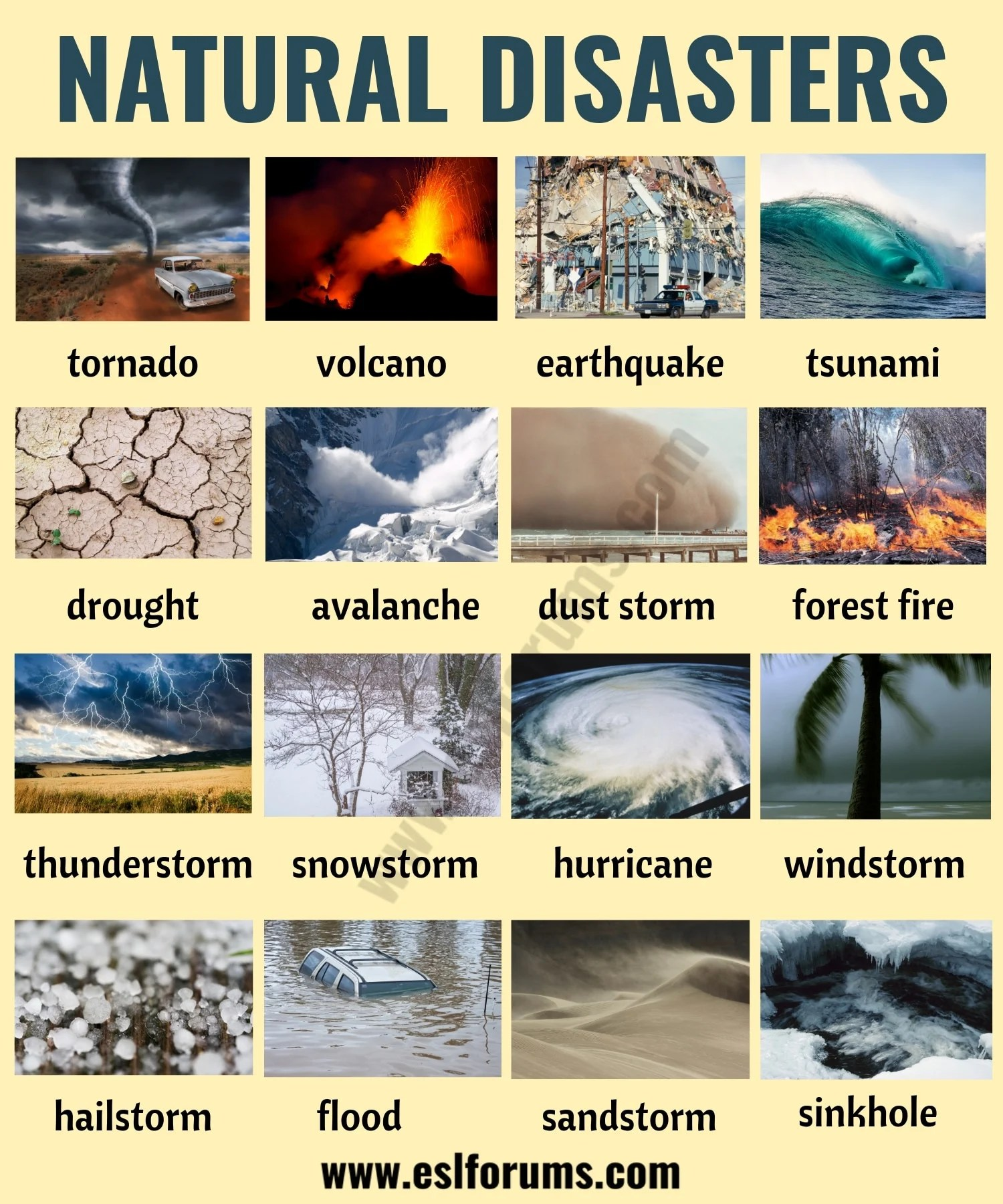 Natural Disasters Different Types Of Natural Disasters